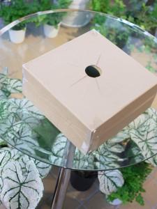 フラワーギフトの梱包用段ボール