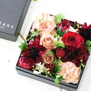 BOX-arr-08